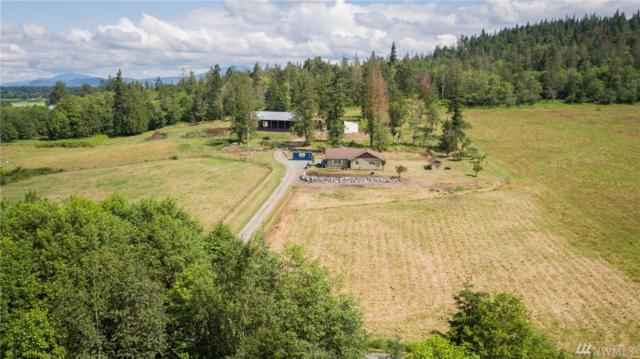 22681 Babcock Rd, Mount Vernon, WA 98273 (#1487431) :: NW Home Experts