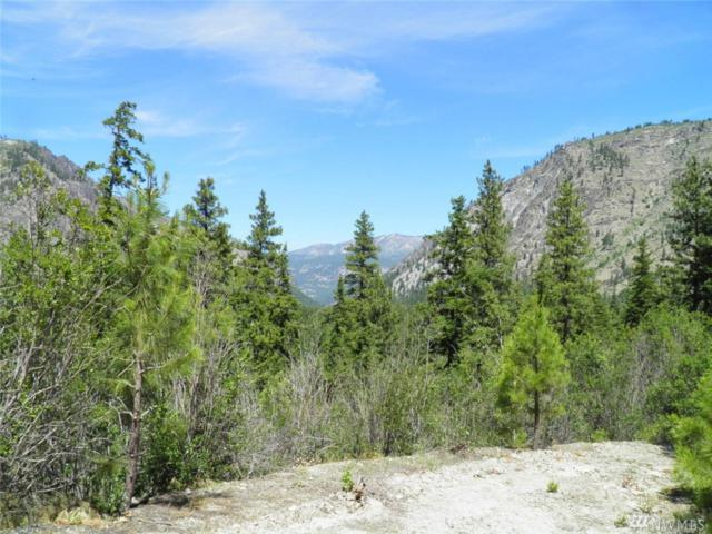 0 Tyee View Entiat River Rd, Entiat, WA 98822 (#1487501) :: Real Estate Solutions Group