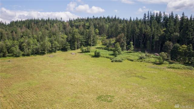 0-NHN Babcock Rd, Mount Vernon, WA 98273 (#1487601) :: Lucas Pinto Real Estate Group