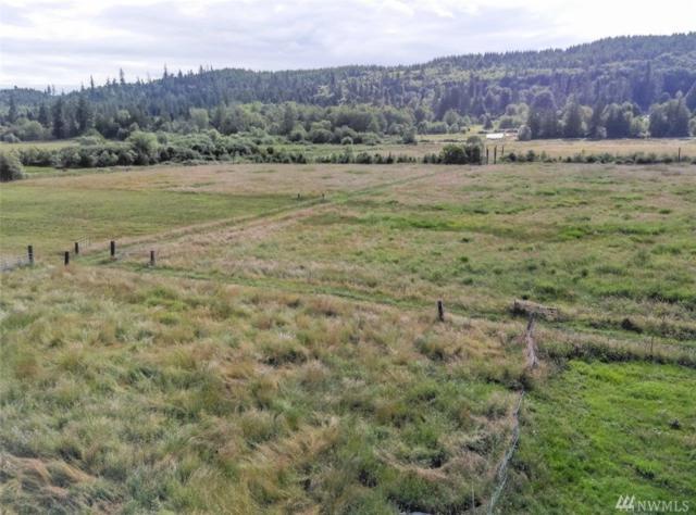 6223 Beaver Valley Rd, Chimacum, WA 98325 (#1487657) :: Ben Kinney Real Estate Team