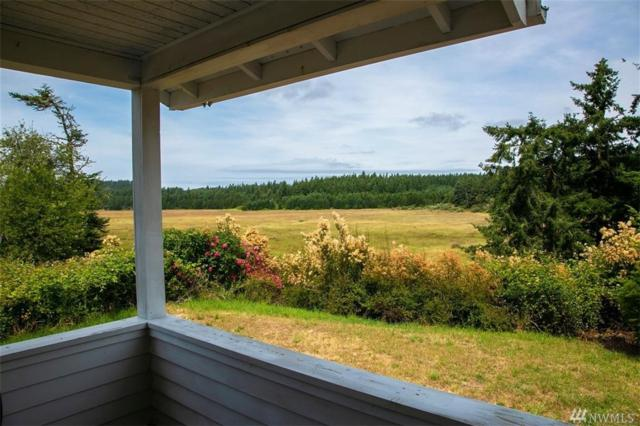 1418 Beaverton Valley Rd, San Juan Island, WA 98250 (#1488470) :: Real Estate Solutions Group
