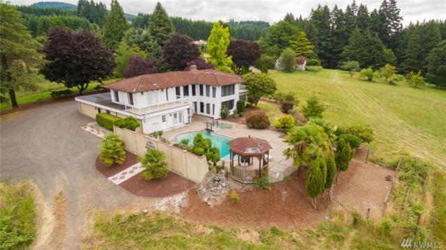 6211 Green Mountain Rd, Woodland, WA 98674 (#1488518) :: Platinum Real Estate Partners
