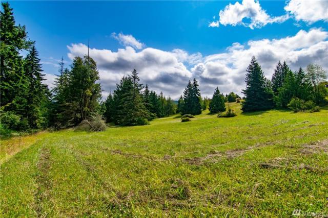 999 Overlook Trail Trail, Sequim, WA 98382 (#1488538) :: Kimberly Gartland Group