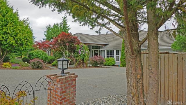 21 Elk Pass Rd, Sequim, WA 98382 (#1488867) :: Ben Kinney Real Estate Team