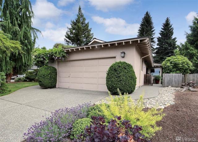 9702 41st Place NE, Seattle, WA 98115 (#1488918) :: Kimberly Gartland Group