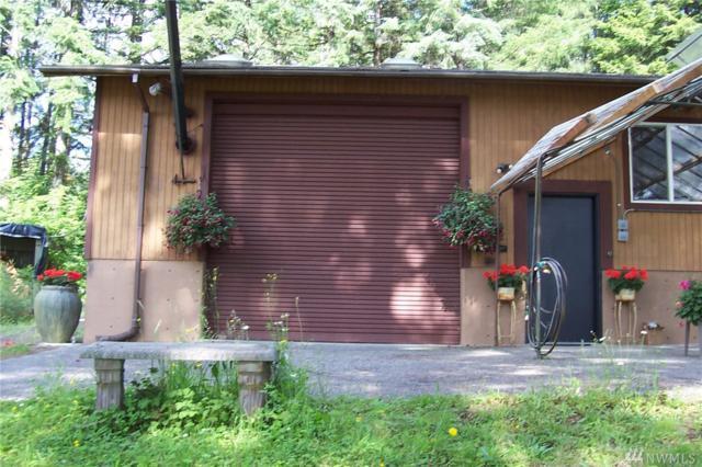22828 E Lake Kayak Dr, Monroe, WA 98272 (#1489138) :: Crutcher Dennis - My Puget Sound Homes