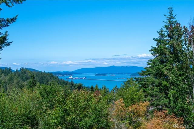 6790 San Juan Hill Lane, Anacortes, WA 98221 (#1489217) :: Crutcher Dennis - My Puget Sound Homes