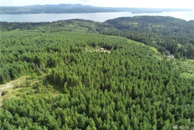 0 Hazel Point Rd, Quilcene, WA 98376 (#1489976) :: Better Properties Lacey