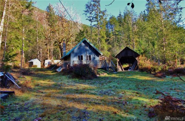 2575 Duckabush Rd, Brinnon, WA 98320 (#1490078) :: Alchemy Real Estate