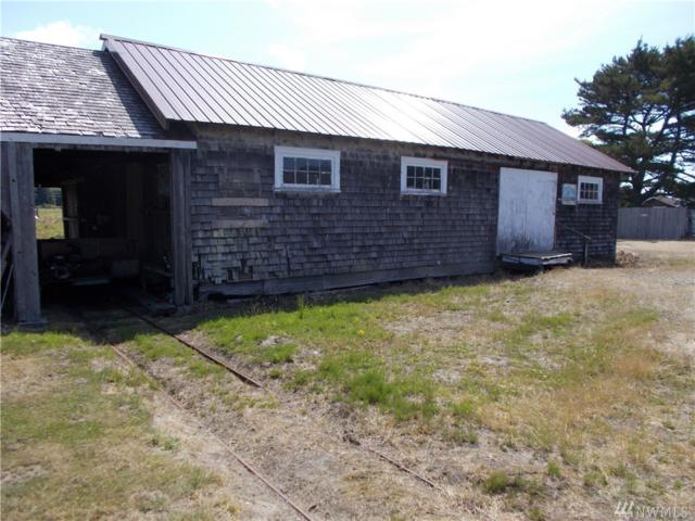 1032 Hanna Lane, Grayland, WA 98547 (#1490160) :: Northern Key Team