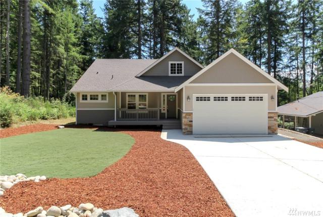 12012 Sound Dr, Anderson Island, WA 98303 (#1490298) :: Platinum Real Estate Partners