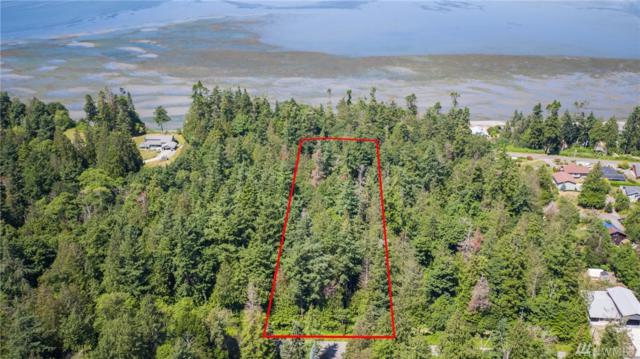 0-NHN Halloran Rd, Bow, WA 98232 (#1490607) :: Platinum Real Estate Partners