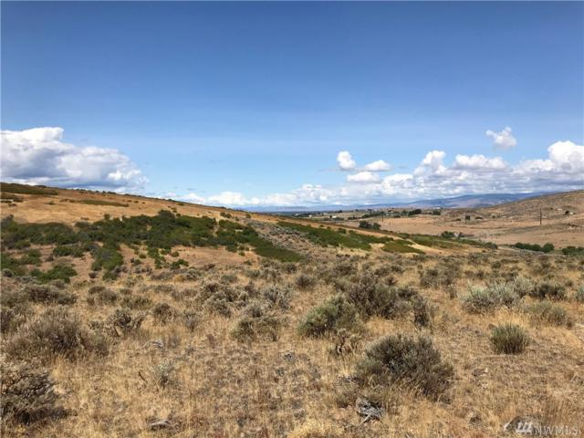 1-xxx Hidden Acres Dr, Ellensburg, WA 98926 (#1490627) :: Coldwell Banker Kittitas Valley Realty