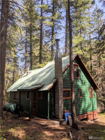 4 Hatchery Creek Rd, Leavenworth, WA 98826 (MLS #1490753) :: Nick McLean Real Estate Group