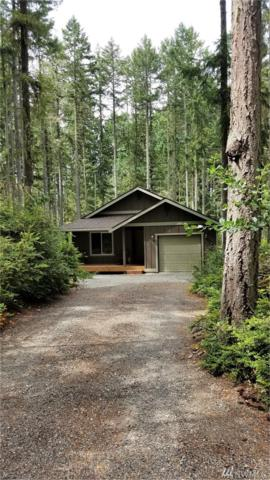 11011 Greenwood Dr, Anderson Island, WA 98303 (MLS #1490776) :: Matin Real Estate Group