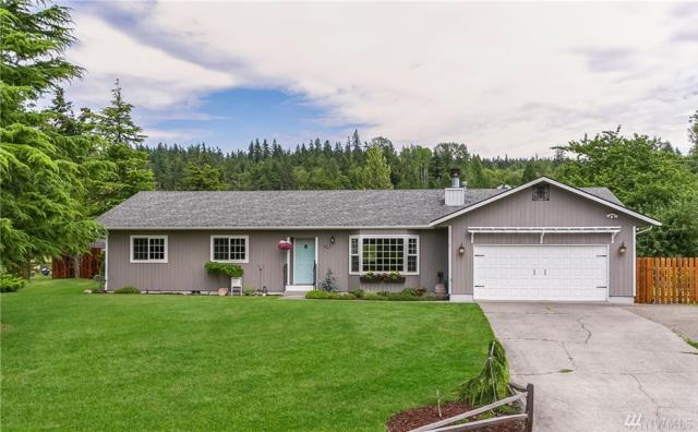 3786 Brownsville Place, Bellingham, WA 98226 (#1491145) :: Platinum Real Estate Partners