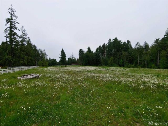 2331 140th Ave SW, Tenino, WA 98589 (#1491247) :: Platinum Real Estate Partners