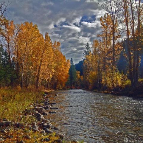 161 Twisp River Road, Twisp, WA 98856 (#1491249) :: Better Properties Lacey
