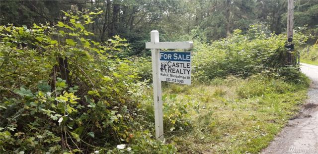 29711 39th Av Ct E, Graham, WA 98338 (#1491355) :: Priority One Realty Inc.