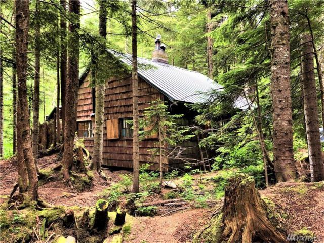 20 Denny Creek, Snoqualmie Pass, WA 98068 (#1491442) :: Chris Cross Real Estate Group