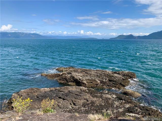 0 Pioneer Hill Rd, Orcas Island, WA 98279 (#1491508) :: Kimberly Gartland Group