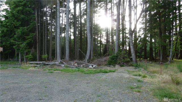 239 Fisher Ave NE, Ocean Shores, WA 98569 (#1491785) :: Platinum Real Estate Partners