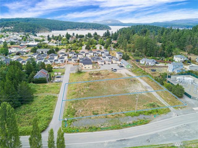 724-744 Hamilton Ranch Rd, Friday Harbor, WA 98250 (#1491907) :: Ben Kinney Real Estate Team