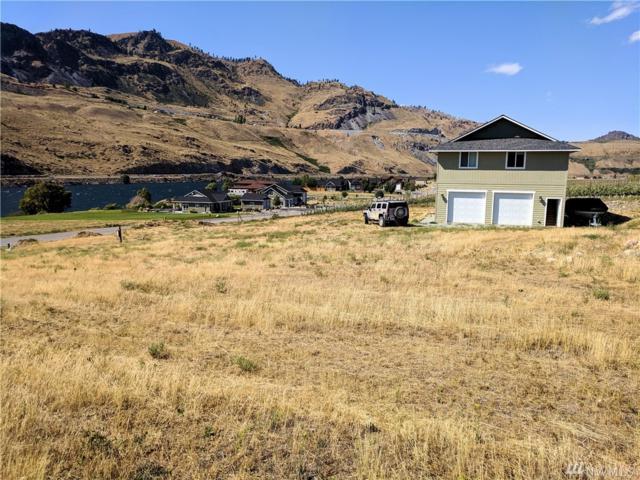 15 E Shore Ct, Orondo, WA 98843 (#1492079) :: Platinum Real Estate Partners