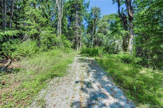1800 Forest Hill Rd Lot A, Camano Island, WA 98282 (#1492108) :: Ben Kinney Real Estate Team