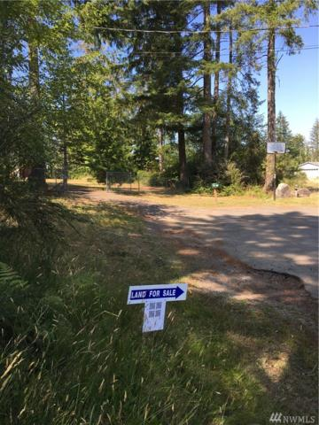 92004 E Dayspring Rd, Shelton, WA 98584 (#1492332) :: Pacific Partners @ Greene Realty