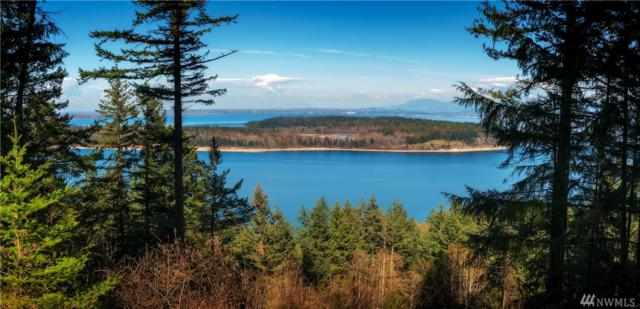 2965 Hales Passage Dr, Lummi Island, WA 98262 (#1492469) :: Canterwood Real Estate Team