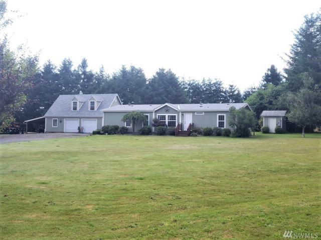 107 Moonlight Lane, Cinebar, WA 98533 (#1492564) :: Chris Cross Real Estate Group