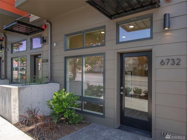 6732 15th Ave NW, Seattle, WA 98117 (#1492846) :: Platinum Real Estate Partners