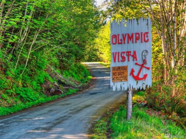 530 E Olympic Vista Dr, Union, WA 98592 (#1493237) :: Platinum Real Estate Partners
