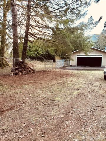 0 Palomino Lane, Brinnon, WA 98320 (#1493285) :: Platinum Real Estate Partners