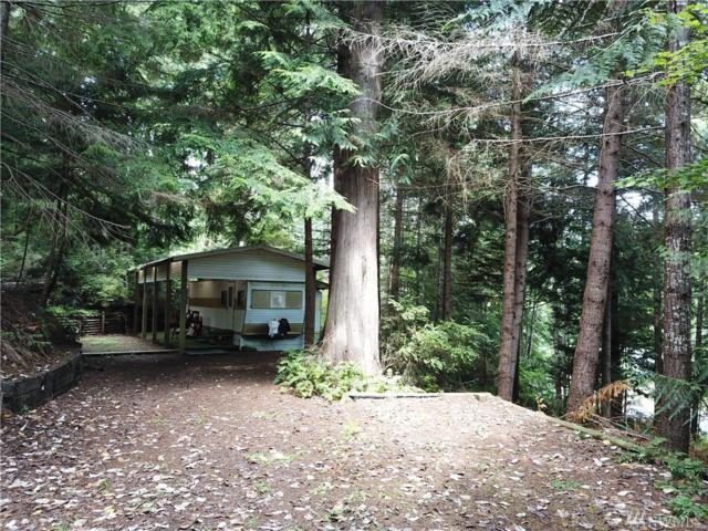 163 Point View Ave, Brinnon, WA 98320 (#1493426) :: Canterwood Real Estate Team