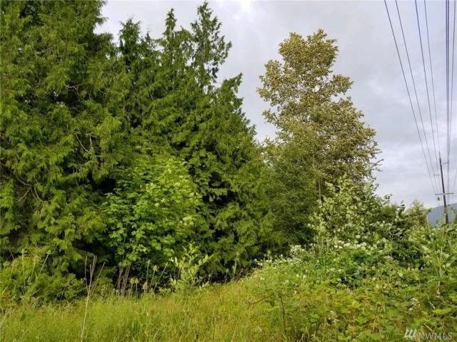 313 Weston, Sequim, WA 98382 (#1493724) :: McAuley Homes