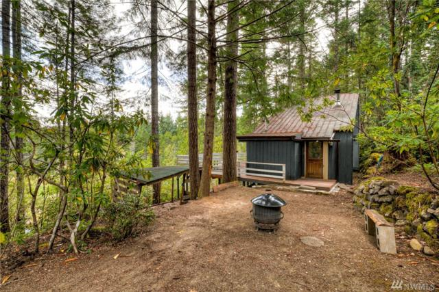 191 NE Circle Dr, Tahuya, WA 98588 (#1493749) :: Platinum Real Estate Partners