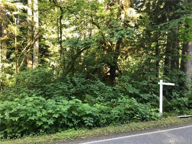 212-approx S Lake Roesiger Rd, Snohomish, WA 98290 (#1493829) :: NW Homeseekers