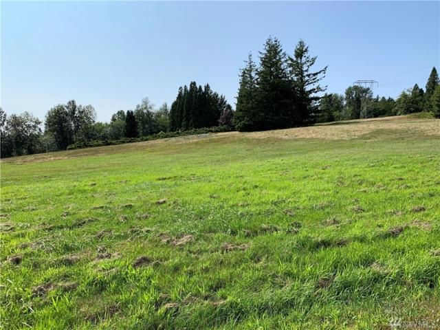 0 Brown Rd, Ferndale, WA 98248 (#1493832) :: Mike & Sandi Nelson Real Estate