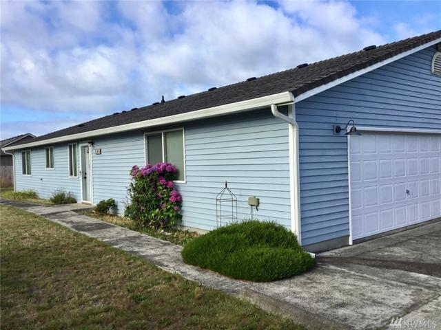 816 325th Place, Ocean Park, WA 98640 (#1494162) :: Mosaic Home Group