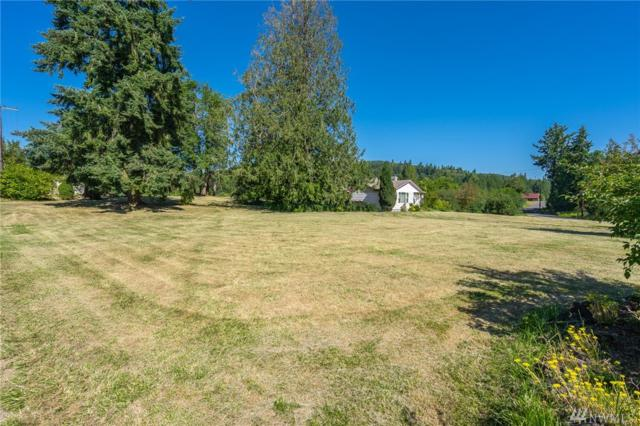 231 Roundtree Rd, Curtis, WA 98538 (#1494282) :: Record Real Estate