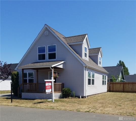6535 Quest St, Ferndale, WA 98248 (#1494395) :: Mike & Sandi Nelson Real Estate