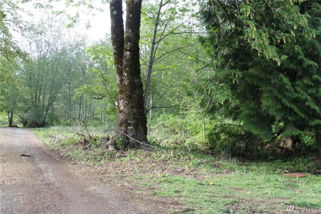 0 Ravena Lane, Kelso, WA 98626 (#1494748) :: The Kendra Todd Group at Keller Williams