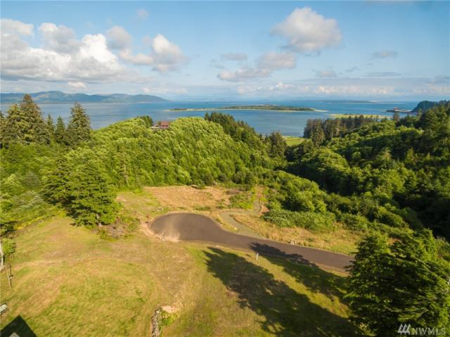 0 Discovery View Ct, Ilwaco, WA 98624 (#1495349) :: Capstone Ventures Inc