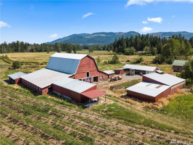 3170 E Smith Rd, Bellingham, WA 98226 (#1495467) :: Real Estate Solutions Group