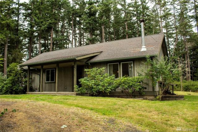 1349 Terrace Dr, San Juan Island, WA 98250 (#1495638) :: Northern Key Team