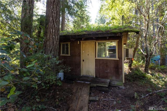 2440 W Star Lake Dr, Elma, WA 98541 (#1495808) :: Ben Kinney Real Estate Team