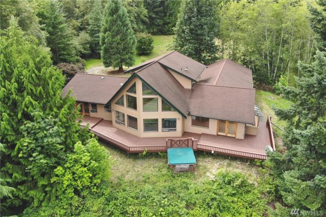 3993 E Grapeview Loop Rd, Grapeview, WA 98546 (#1495826) :: Better Properties Lacey