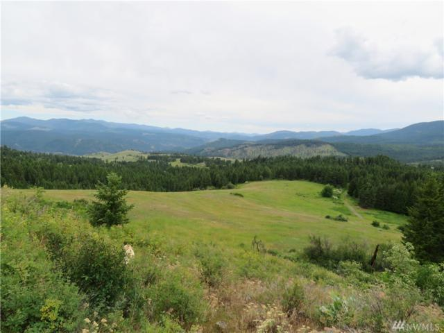0-TBD Cougar Mt. Rd, Curlew, WA 99118 (#1496027) :: Keller Williams Realty